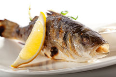 BBQ Sea Bass. Grilled Foods - BBQ Sea Bass Fish with Lemon and Mixed Salad royalty free stock photos
