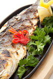 BBQ Sea Bass Royalty Free Stock Photography