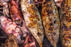 Bbq sea food and pork Royalty Free Stock Image