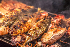 Bbq sea food and pork Royalty Free Stock Photos