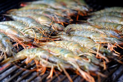 BBQ shrimp. Large prawns, or shrimp, cooking on a BBQ Stock Photography