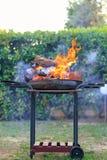 BBQ sur le jardin photo libre de droits