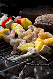 Bbq surf and turf Royalty Free Stock Photo