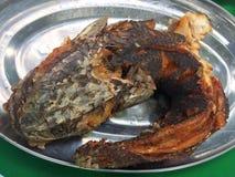 BBQ tête de serpent chaud et épicé de poissons grillé Image libre de droits