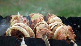 Bbq van het barbecue heerlijke vlees 4k stock videobeelden