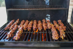 BBQ Venison (Deer Meat) on a grill. BBQ of Black deer meat stock image
