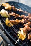 BBQ vlees Royalty-vrije Stock Foto's