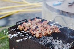 BBQ vlees bij de grill in tuin Stock Afbeelding
