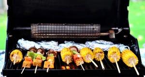 BBQ vleespen Royalty-vrije Stock Afbeelding