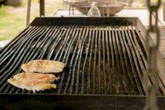 BBQ, Zielarska kurczak pierś obrazy stock