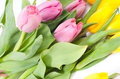 Bbunch dei fiori Immagini Stock