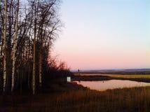 BC农厂日出加拿大 库存图片