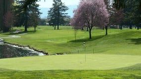 BC路线高尔夫球打高尔夫球的绿色 库存照片