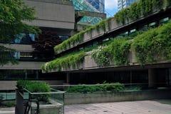 法院大楼, BC温哥华,加拿大 库存图片