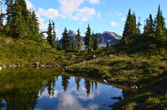 BC, Canadá, Bella Coola Valley. Lago pequeno perto de M Gurr Lake Imagens de Stock Royalty Free
