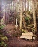BC fairy pathway Royalty Free Stock Photo