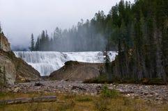 bc Kanada guld- near waptavattenfall Royaltyfri Foto