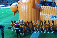 BC Lions cheerleaders Royalty Free Stock Image