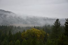 BC Mountians. Misty mountains in rural british columbia in the fall Stock Images