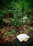 Bücher auf Regenwaldspur Stockfotografie
