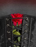 Bdsm gothic fetish corset with rose. Fetish background royalty free stock photo