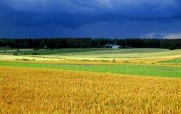 Beëindig landbouwgrond no.2 stock afbeeldingen