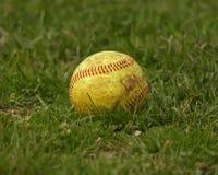 Beísbol con pelota blanda/bola Fotografía de archivo