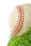 Beísbol con pelota blanda en cierre de la hierba para arriba imagenes de archivo