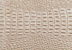 Beżowy Rzemienny tekstury tło Zbliżenie fotografia tła beżowa gada skóra beżowa Zdjęcie Royalty Free
