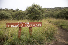 Be Aware of Buffaloes sign Royalty Free Stock Image