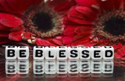 Be blessed message with red flowers. Red flowers and be blessed message with red flowers stock photography