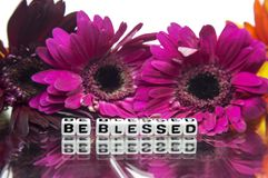 Be blessed with mix flowers. Be blessed with mixed flowers in the background royalty free stock photography