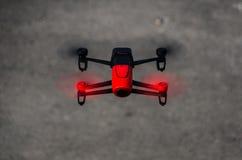 Be-bop de perroquet aérien images libres de droits