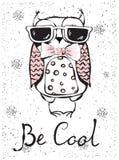 Be cool owl Stock Photos