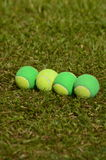 Be different player in tennis. A tennis ball, solid, poses in a straight line with several balls used in children's tennis training, which are of two colors royalty free stock photos