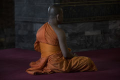 Be för buddistisk munk Royaltyfria Foton