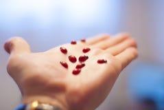 Be free, ladybugs, fly away. Stock Photo