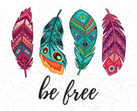 Be free. Vector card with ethnic decorative feathers Stock Images