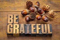 Be grateful - Thanksgiving theme. Word abstract in vintage letterpress wood type with accorn decoration stock image