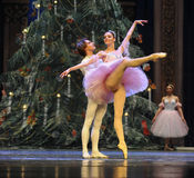 Be in love with each other-The Ballet  Nutcracker Stock Images