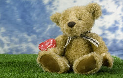 Be mine bear  Stock Photography