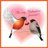 Be my Valentine forever greetings card Royalty Free Stock Photography