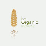 Be organic vector logo. Flat style logotype template with wheat and roots. Easy to use business template. Logo for organic products, bakery, etc Stock Photos
