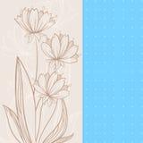 Beżowi kwiaty Obrazy Royalty Free