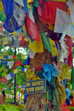 Be quiet - placard with a call for silence on Bodhi tree - a place of Buddha enlightenment. Stock Photos