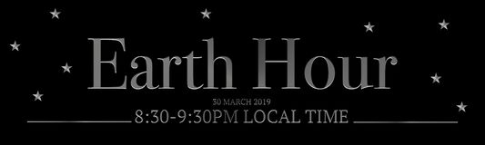 Earth Hour 30 march 2019 8:30-9:30 PM stock illustration