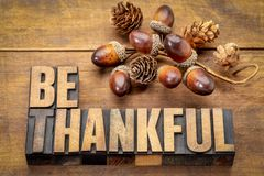 Be thankful - Thanksgiving theme. Word abstract in vintage letterpress wood type with accorn decoration royalty free stock photography