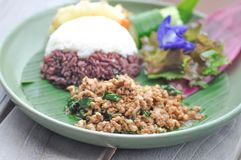 Be*wegen-gebraden basilicum met varkensvlees en rijst Royalty-vrije Stock Foto's