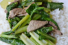 Be*wegen-gebraden Chinese kool met varkensvleeslever op duidelijke rijst stock foto's