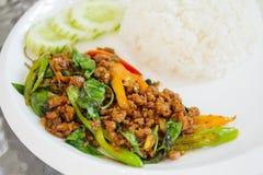 Be*wegen-gebraden varkensvlees met basilicumverlof (Kaprao-Moo) Stock Foto's